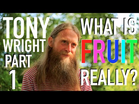 What is Fruit, Really? - Tony Wright: Pt. 1