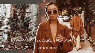 A Peaceful Week In Nature | October Recap