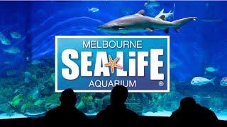 Melbourne Sea Life Aquarium