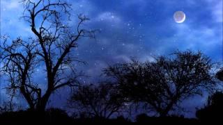 The night - Ikeya Zhang (teckno.com 11)
