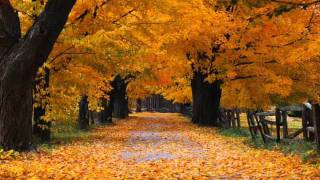 Video OST Autumn in My Heart - Romance download MP3, 3GP, MP4, WEBM, AVI, FLV Februari 2018
