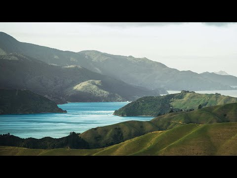 NZ's first conservation/fishing partnership celebrates successes