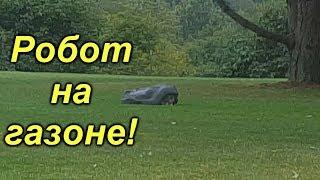 Я такого ещё не видел - робот косит газон!