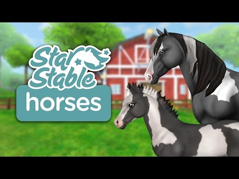 Star Stable Horses (iOS/Android)