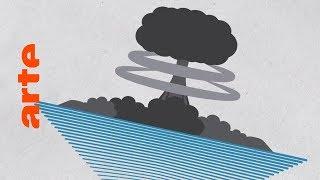Überleben nur Kakerlaken einen Atomkrieg? | Data vs. Fake | ARTE