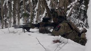 200 danske soldater skal til Estland i 2020