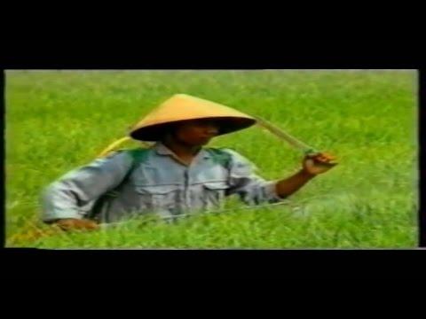 Balada Pak Tani by Robi Navicula (Unofficial Video)