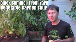 Quick Summer Front Yard Vegetable Garden Tour