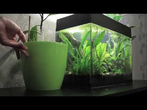 Аквариум мажора, переезд старого аквариума на новую тумбочку