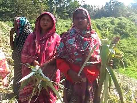 Chittagong Hill Track TERRIFIED Bengali People by Jumma Terrorist part 3 YouTube