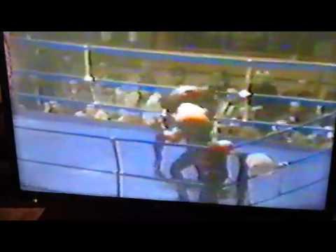 Tony Mundine v Ennio Cometti 30th Nov 1979 Trieste, Italy