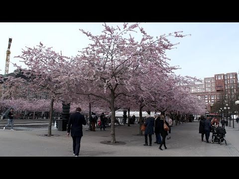 Stockholm City April 2017 UHD 4K