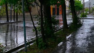 Evening Rain & Thunder - Rainstorm Sounds For Sleep and Relax