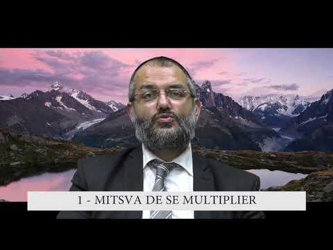 613 Mitsvot - 1er Commandement DE LA TORAH - Se Multiplier - Rav Ilan Fitoussi