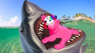 Барби и волшебные дельфины Игры с Барби спасает дельфинов Волшебные медвежата #Малинки DOLL