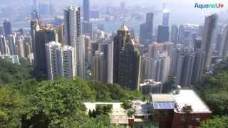 Biotope in Hongkong mit Garnelen, Grundeln, Schmerlen und Barben