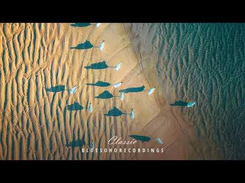 Ancientmind - The Last Birds (Arctic Moon Remix)