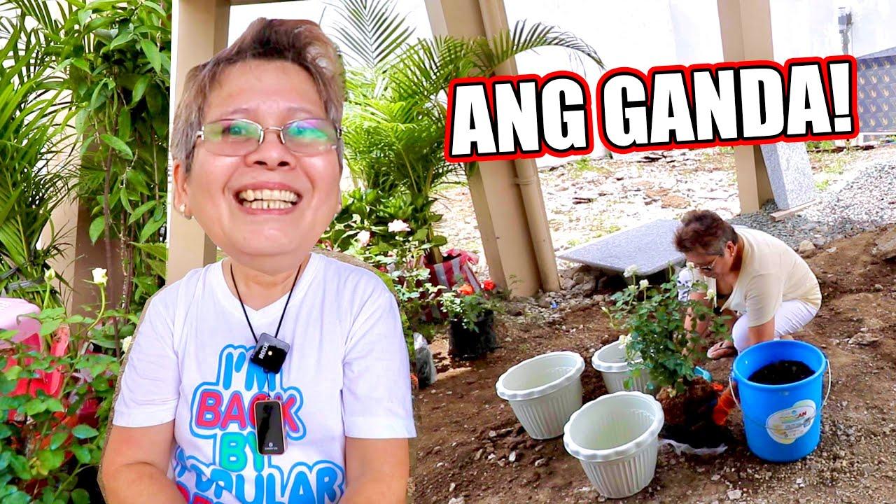 MAGTANIM TAYO NG ROSES AT IBA PANG HALAMAN SA BAGONG BAHAY