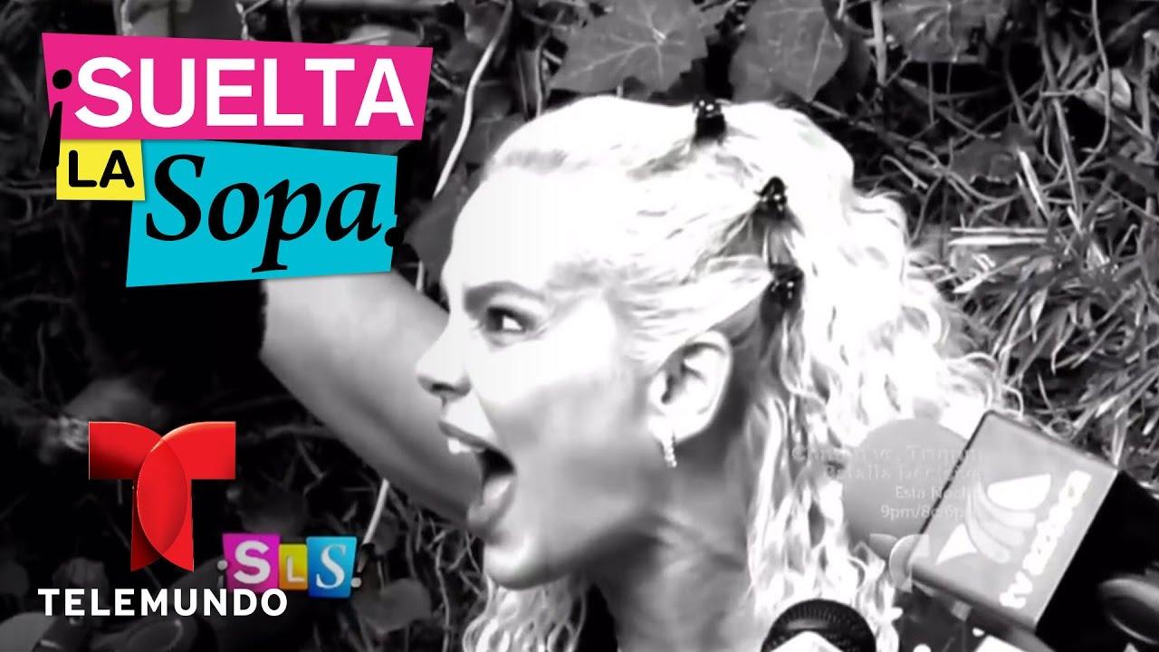 Download Suelta La Sopa | Niurka Marcos usó una rata al hablar de Laura Zapata | Entretenimiento
