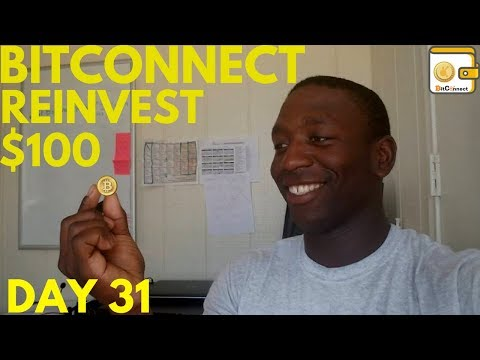 Bitconnect Reinvest - $100 Loan Investment Update Day 31!