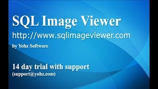 An introduction to SQL Image Viewer