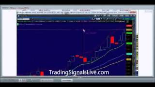 Investment advice from a professional trader - Binary Options trading signals live, Day 7