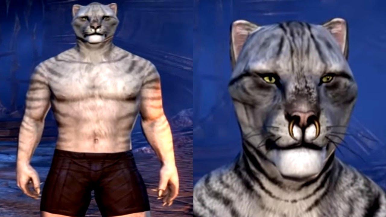 Elder Scrolls Online Character Creation (Khajiit)