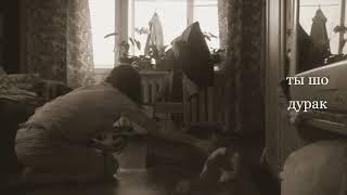 как научить кошку команде туннель !  кошка Венера и Обучалка