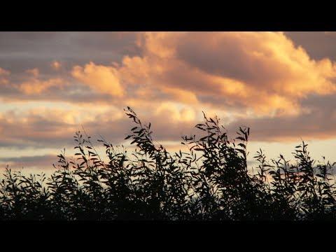 Усвяты. Псковская область. Фотографии. Песня Речка С. Курашев
