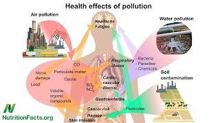 Diabetes mellitus a dioxiny