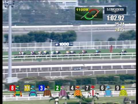 Download [HKIR 2013] AKEED MOFEED takes the G1 LONGINES Hong Kong Cup