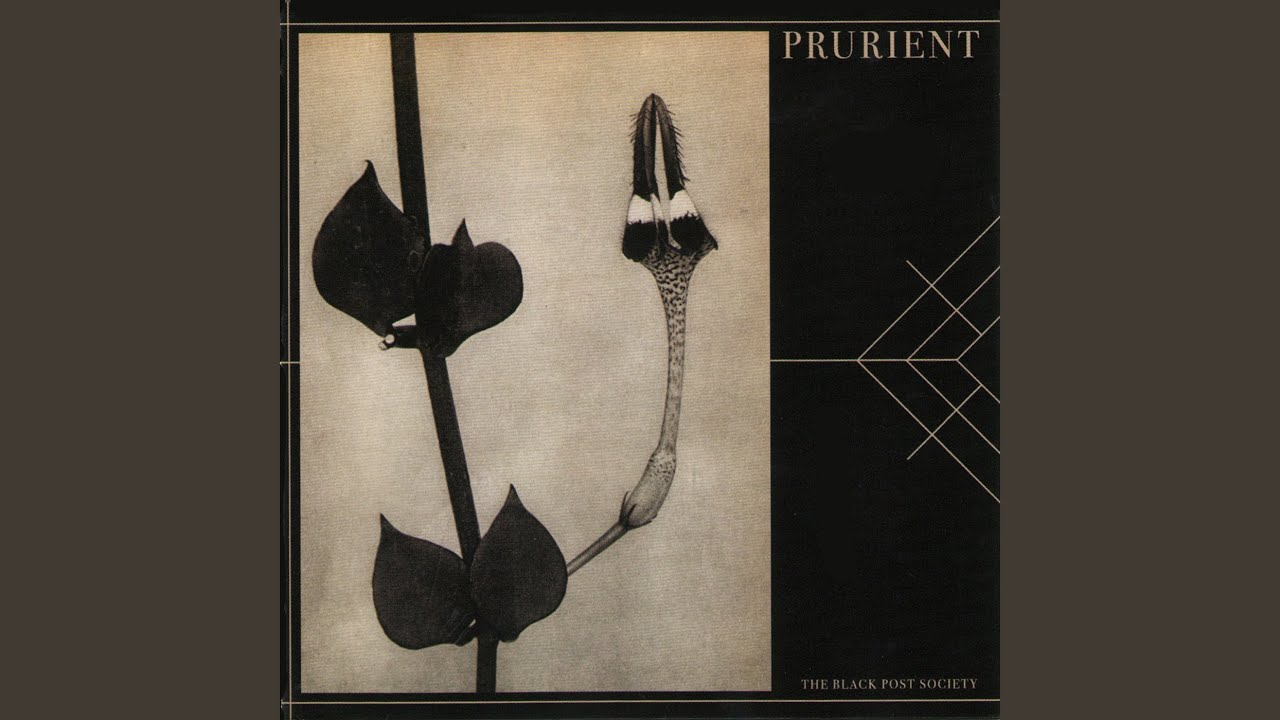 Kiss of The Whip: A Beginner's Guide to Prurient – Telekom