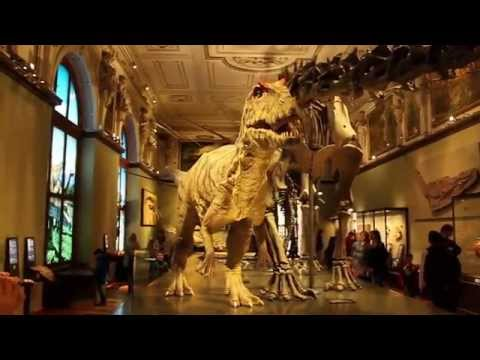 Vienna Austria, Natural History Museum
