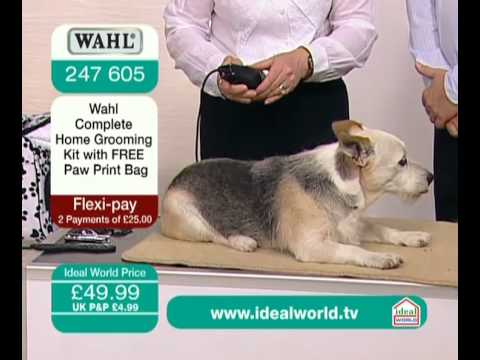 wahl complete home dog grooming kit