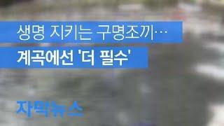 [자막뉴스] 생명 지키는 구명조끼…계곡에선 '더 필수'…
