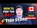 Best Aquarium Fish Store Ever?! 🐟 How to Find a Quality Aquarium Shop