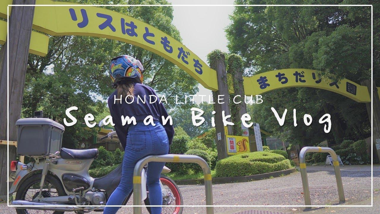 30代女子が ぼっちでリス園に行く|わたしの休日バイク Vlog「駐車場に閉じ込められそうになりました」