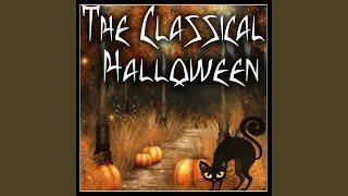 Partita No.2 in D minor for Solo Violin, BWV 1004 : Chaconne