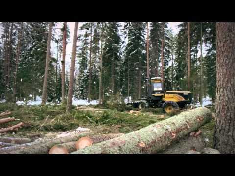 A story about swedish wood