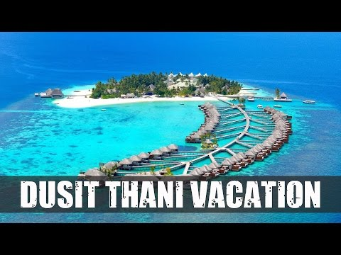Dusit Thani Maldives - Rooms, Dining, Beach, Travel Tips