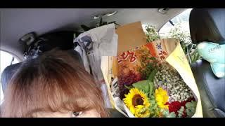 꽃가게 장사전 물건하러  대구 꽃시장 다녀왔습니다~