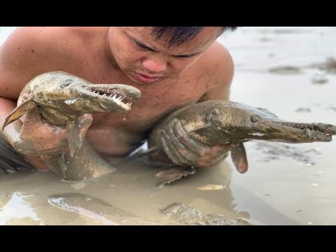 Primitive ovens and survival skills find fish to store food | Grilled fish delicious