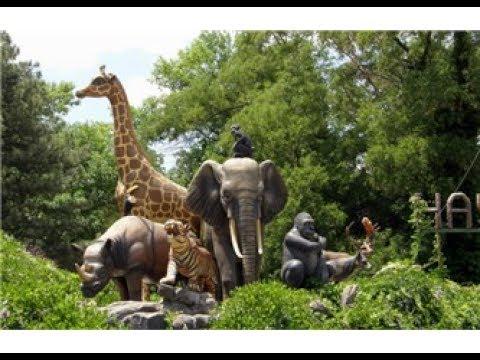 رحلتنا الى اكبر حديقة حيوانات في اسطنبول Youtube