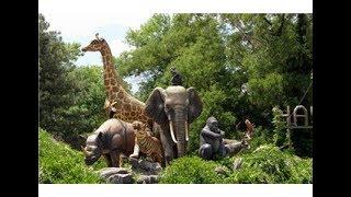 رحلتنا الى اكبر حديقة حيوانات في اسطنبول