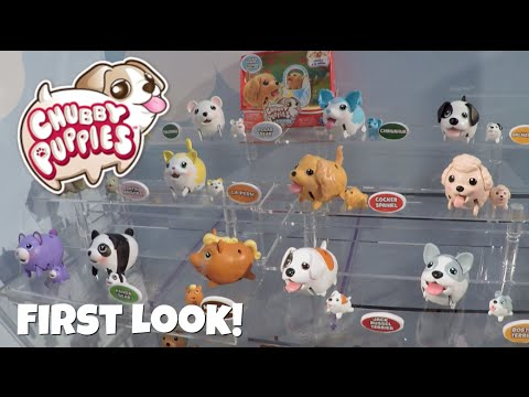 Chubby Puppies Friends New Toys First Look Toy Fair 2016 Youtube