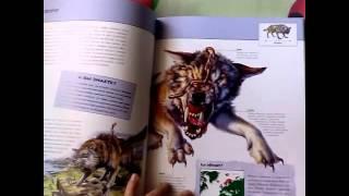 Видеообзор 1. Книга ''фантастические существа.''