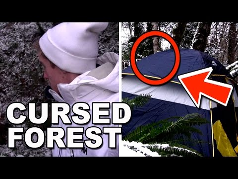 CAMPING ALONE IN CURSED FOREST WHERE PEOPLE DIED IN (YOU WON'T BELIEVE WHAT HAPPENS)