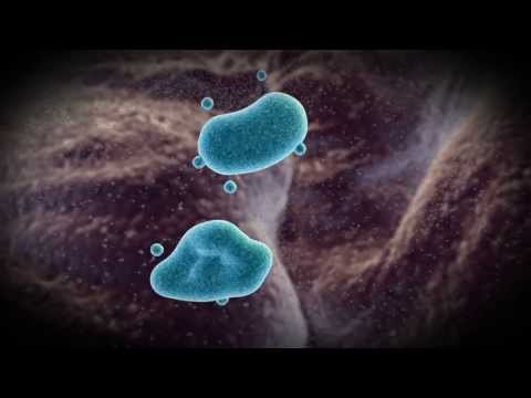 Exosome Isolation