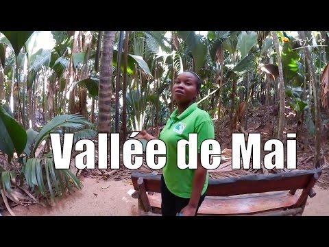 Ralf auf Praslin (Teil 7): Vallée de Mai