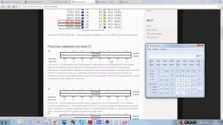 AVR микроконтроллеры для начинащих (урок 6) таймеры-счетчики